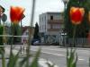 Ortsdurchfahrt Heusenstammer Straße