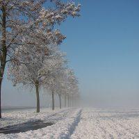 Winterimpressionen · © Eric Fröhlich